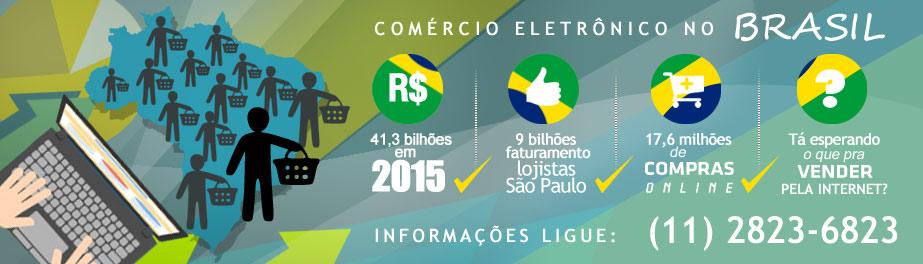 02f152c34 Números do Comércio eletrônico no Brasil. Precisa vender seus produtos pela  internet e não sabe como  Loja Virtual Ligue (11